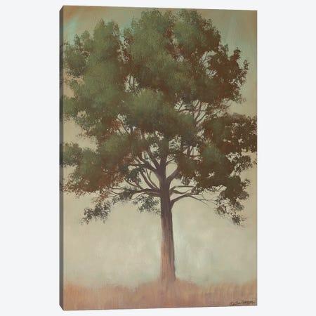 Tonal Tree Canvas Print #TGN6} by Tim Gagnon Canvas Print