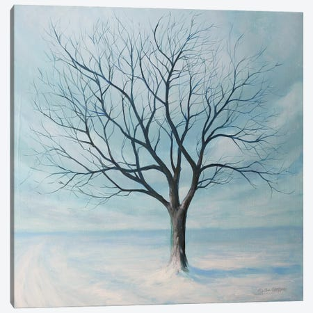 Winter Tree Canvas Print #TGN8} by Tim Gagnon Canvas Artwork