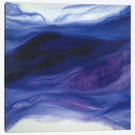 Ocean Daydream Canvas Print #TGU11} by Teodora Guererra Canvas Artwork