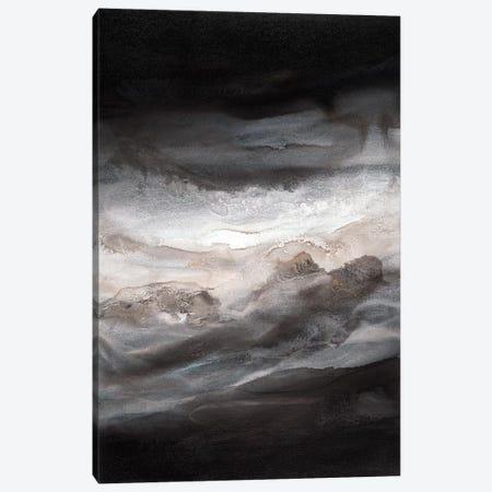 Smokey Eyes I Canvas Print #TGU17} by Teodora Guererra Canvas Print