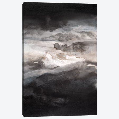 Smokey Eyes II Canvas Print #TGU18} by Teodora Guererra Canvas Art
