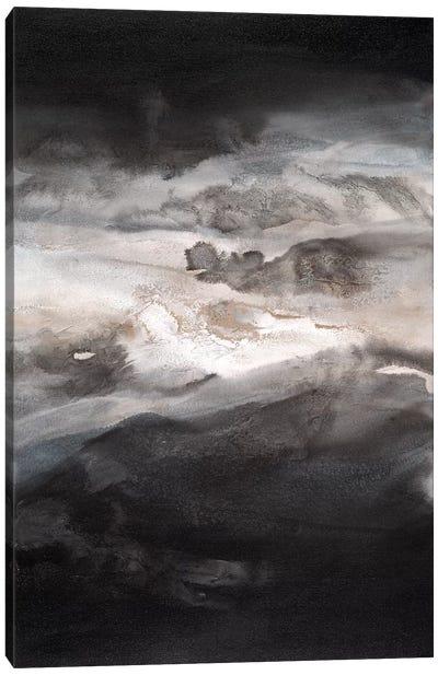 Smokey Eyes II Canvas Art Print