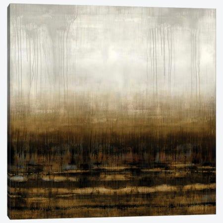 After Glow III Canvas Print #THA4} by Taylor Hamilton Canvas Art Print