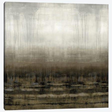 After Glow IV Canvas Print #THA5} by Taylor Hamilton Canvas Print