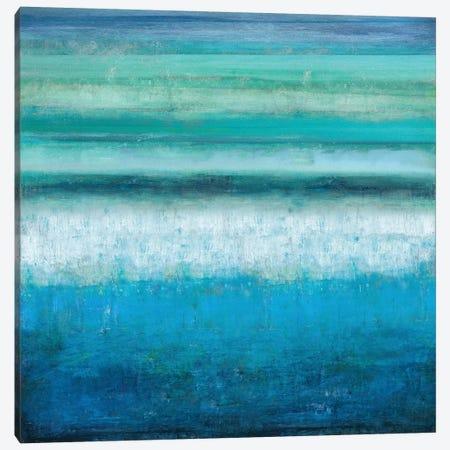 Aqua Tranquility Canvas Print #THA6} by Taylor Hamilton Canvas Art Print