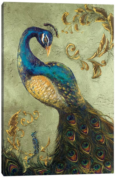 Peacock on Sage II Canvas Art Print