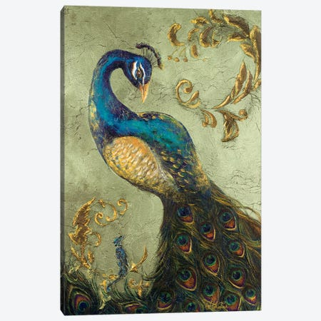 Peacock on Sage II Canvas Print #THK10} by Tiffany Hakimipour Canvas Wall Art