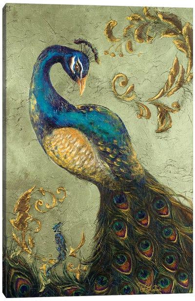 Peacock on Sage II Canvas Art Print