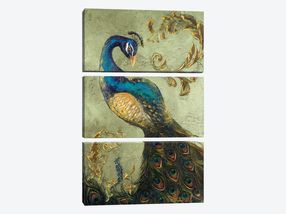 Peacock on Sage II by Tiffany Hakimipour 3-piece Art Print