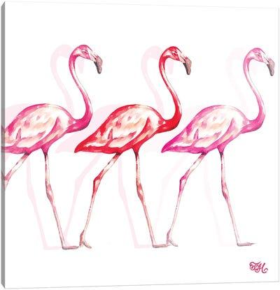 Flamingo Trio I Canvas Art Print