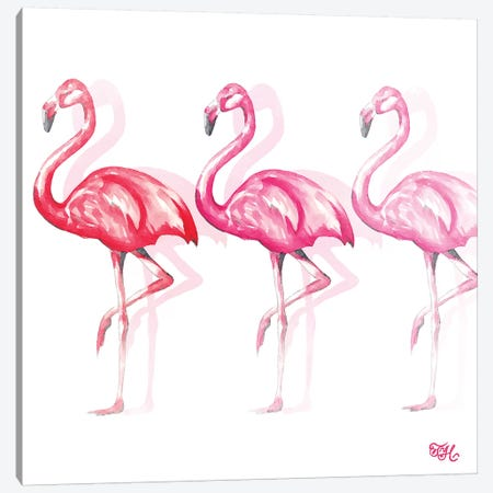 Flamingo Trio II Canvas Print #THK4} by Tiffany Hakimipour Art Print