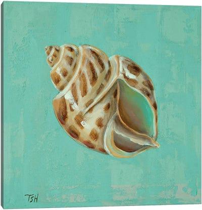 Ocean's Gift II Canvas Art Print