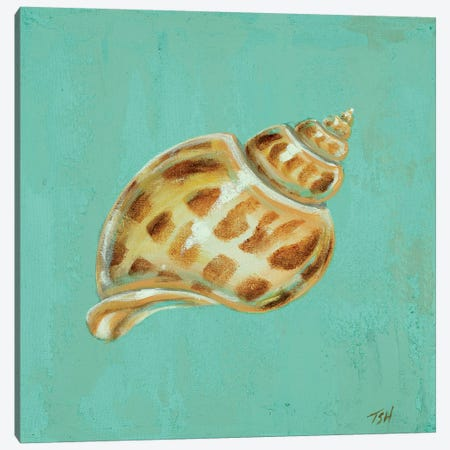 Ocean's Gift III Canvas Print #THK6} by Tiffany Hakimipour Canvas Art Print