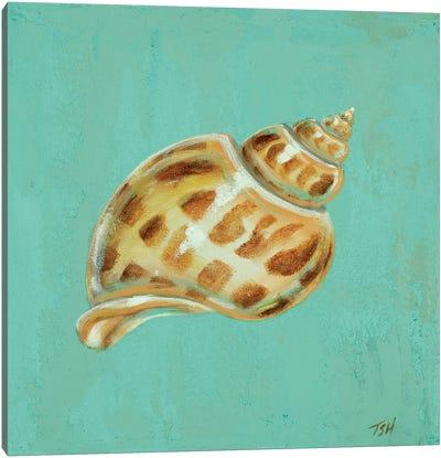 Ocean's Gift III Canvas Art Print