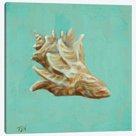 Ocean's Gift IV Canvas Print #THK7} by Tiffany Hakimipour Canvas Print