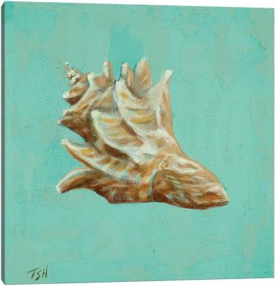 Ocean's Gift IV Canvas Art Print