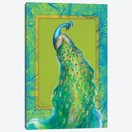 Peacock Daze II Canvas Print #THK8} by Tiffany Hakimipour Canvas Artwork