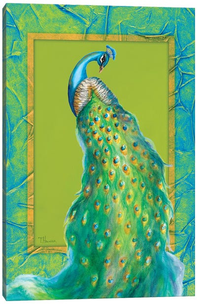 Peacock Daze II Canvas Art Print