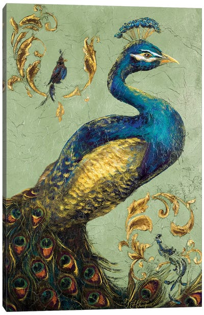 Peacock on Sage I Canvas Art Print