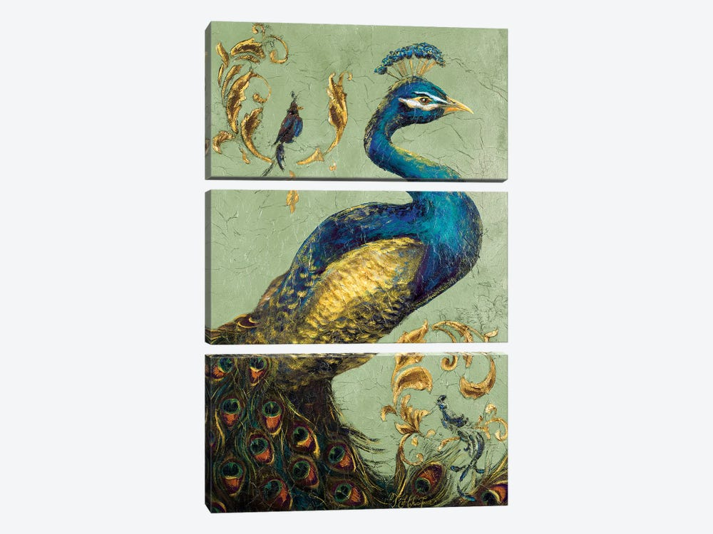 Peacock on Sage I by Tiffany Hakimipour 3-piece Canvas Wall Art