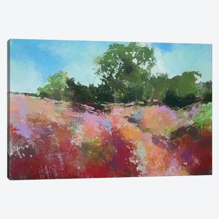 Beautiful Path Canvas Print #THT16} by Anne Thouthip Canvas Art