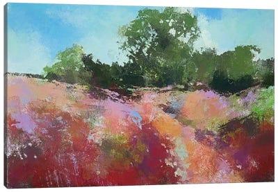 Beautiful Path Canvas Art Print