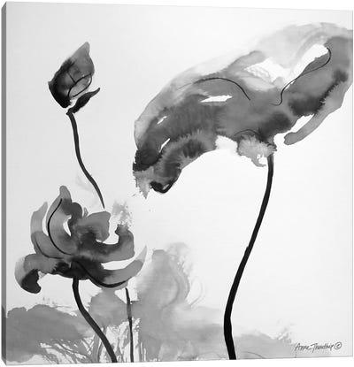 Lotus Flowers II    Canvas Art Print