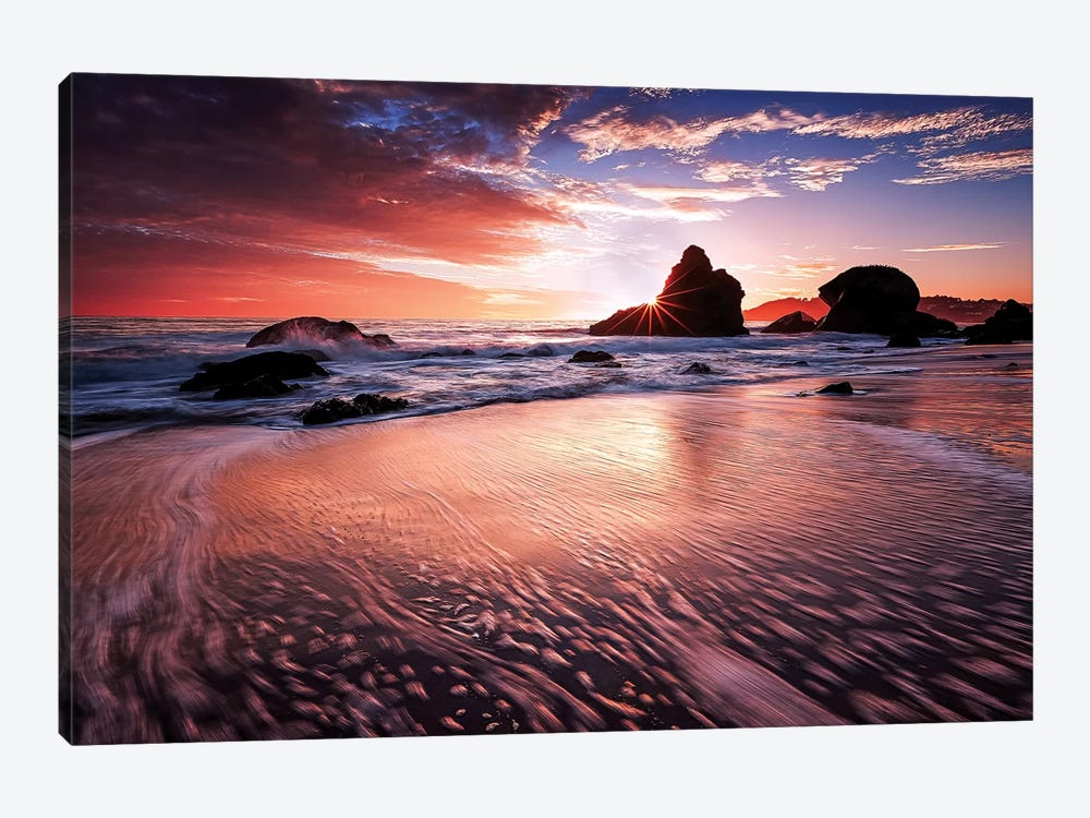 Star Struck by Toby Harriman 1-piece Canvas Art Print