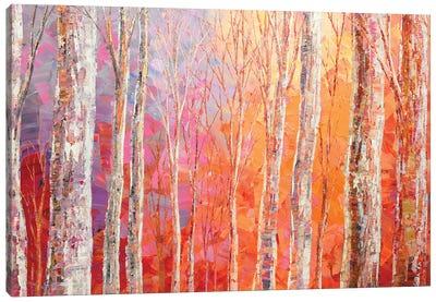 Whisper Of Sunshine Canvas Art Print