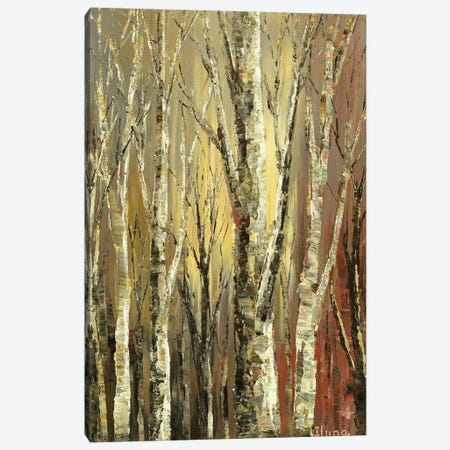 Witches Woods Canvas Print #TIA107} by Tatiana Iliina Canvas Artwork