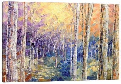Woods Awaken Canvas Art Print