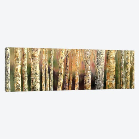 Skinny Trees Canvas Print #TIA117} by Tatiana Iliina Canvas Art Print
