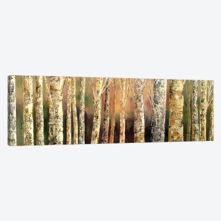 Skinny Trees Canvas Print #TIA117} by Tatiana Iliina Canvas Art Print