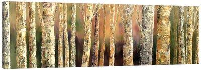 Skinny Trees Canvas Art Print