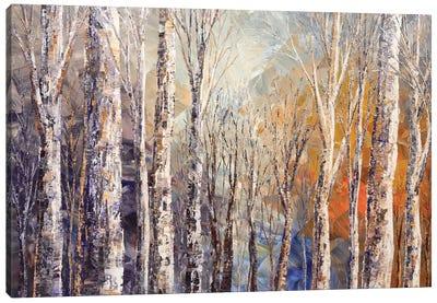 Fox Runs Free Canvas Art Print