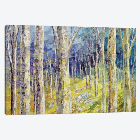 Into The Woods 3-Piece Canvas #TIA49} by Tatiana Iliina Canvas Wall Art