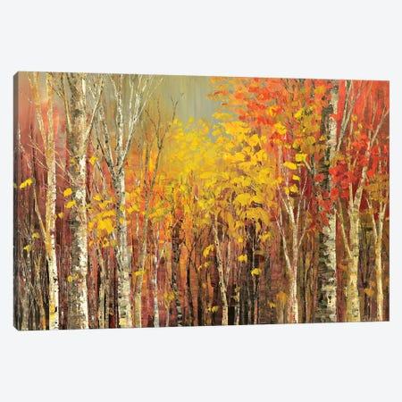 Tangled Colors Canvas Print #TIA4} by Tatiana Iliina Canvas Art