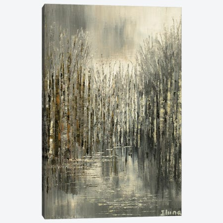 Northern Pewter Canvas Print #TIA68} by Tatiana Iliina Canvas Artwork