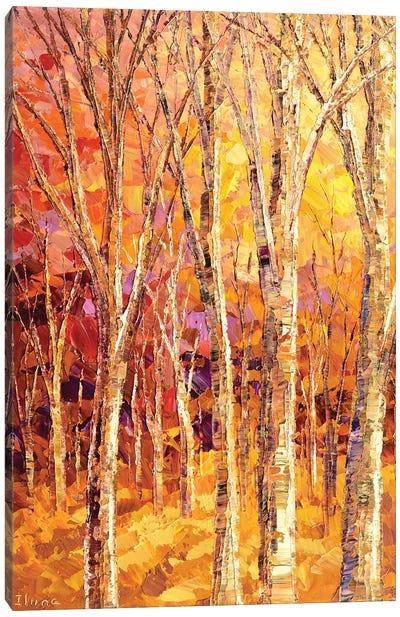 Sunny Ways Canvas Art Print