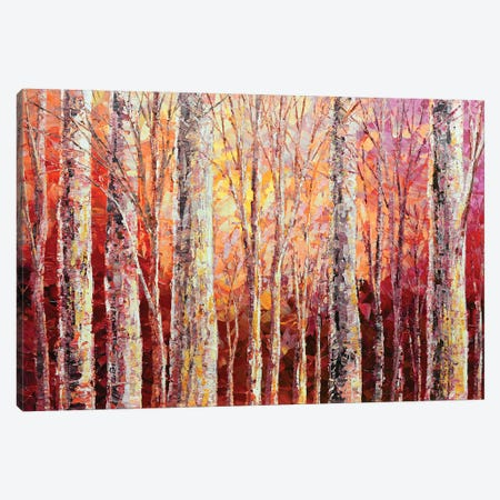 Trees Are Sanctuaries Canvas Print #TIA97} by Tatiana Iliina Canvas Wall Art