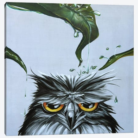 Owl Canvas Print #TIM15} by TIANA Canvas Artwork