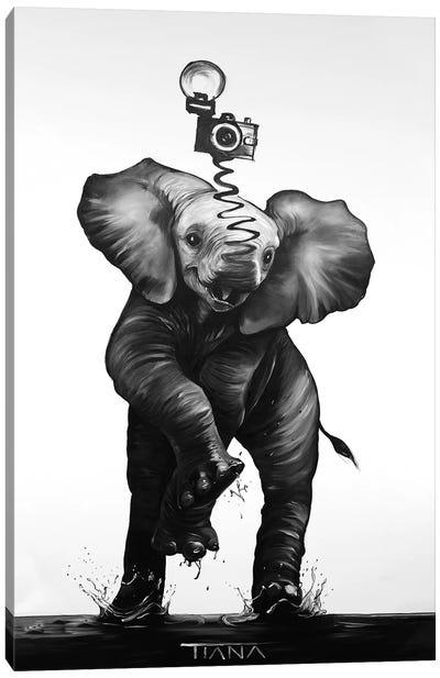 Baby Elephant In Black And White Canvas Art Print