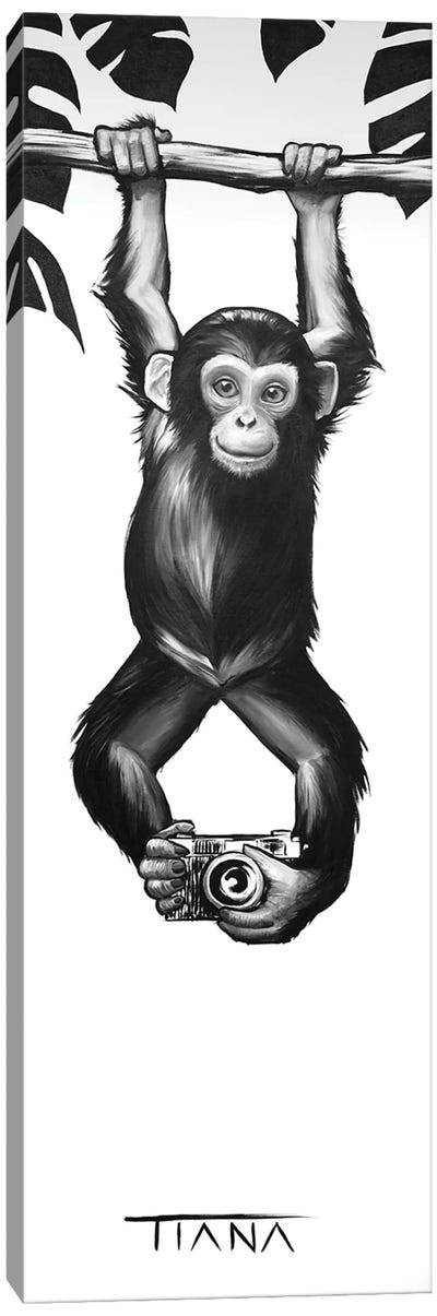 Baby Monkey In Black And White Canvas Art Print