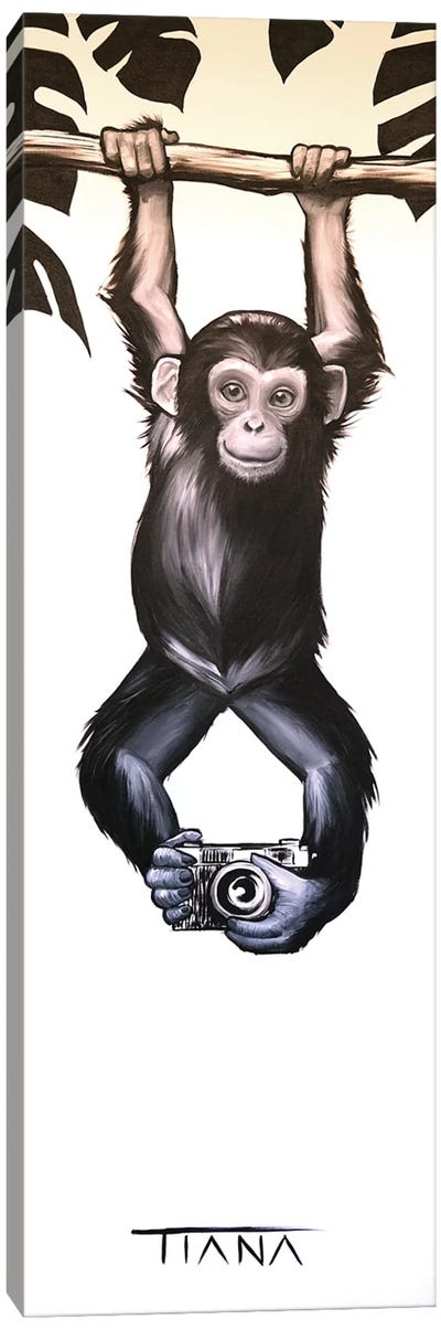 Baby Monkey Canvas Art Print