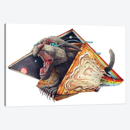 Niam Cat 3-Piece Canvas #TIV31} by Tino Valentin Canvas Wall Art