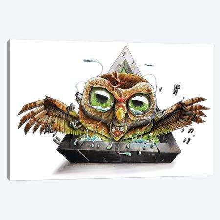 Animal Owl Canvas Print #TIV3} by Tino Valentin Art Print
