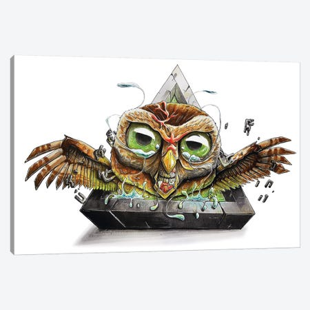 Animal Owl Canvas Print #TIV3} by Tino Valentin Art Print