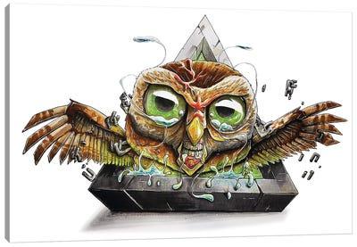 Animal Owl Canvas Art Print