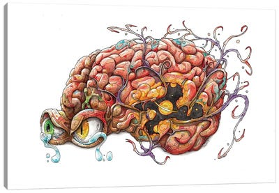 Brain Canvas Art Print