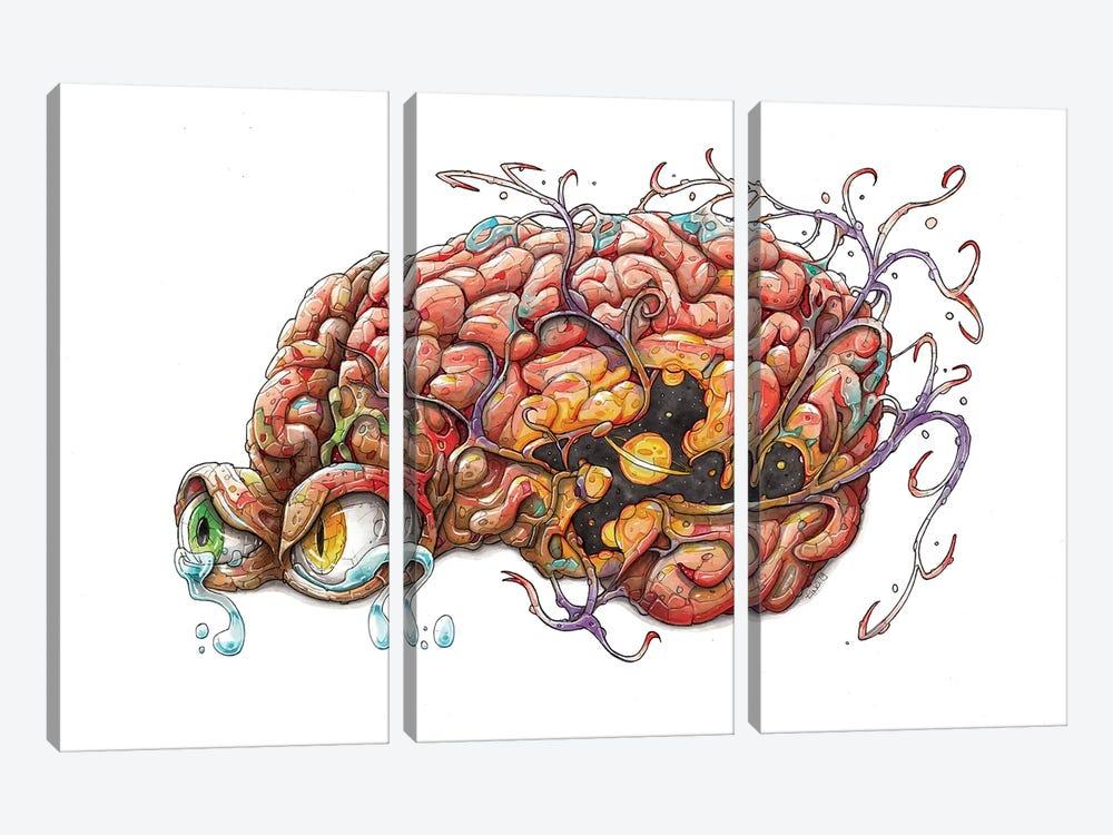 Brain by Tino Valentin 3-piece Canvas Artwork